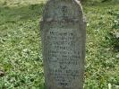 Der alte Friedhof - mitte_11