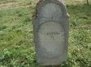 Der alte Friedhof - mitte_12