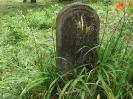 Der alte Friedhof - mitte_16