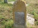 Der alte Friedhof - mitte_1