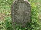 Der alte Friedhof - mitte_21
