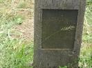 Der alte Friedhof - mitte_27