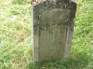 Der alte Friedhof - mitte_29