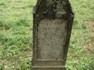 Der alte Friedhof - mitte_2