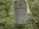 Der alte Friedhof - mitte_30