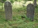 Der alte Friedhof - mitte_8