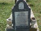 Der alte Friedhof - mitte_9