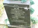Der alte Friedhof - rechts_19