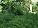 Friedhof 2009