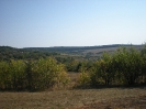 September 2009_3