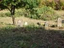Sanierung des Friedhofs